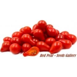 Semi di pomodoro Red Pear