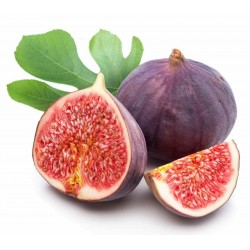 Wild Fig Seeds (from...