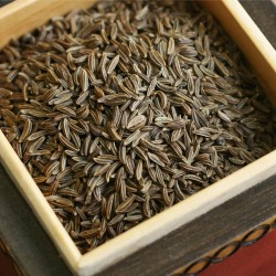 Caraway spice - whole fruit