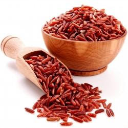 Seme crvenog pirinča...
