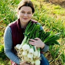 Onion Seeds Paris...