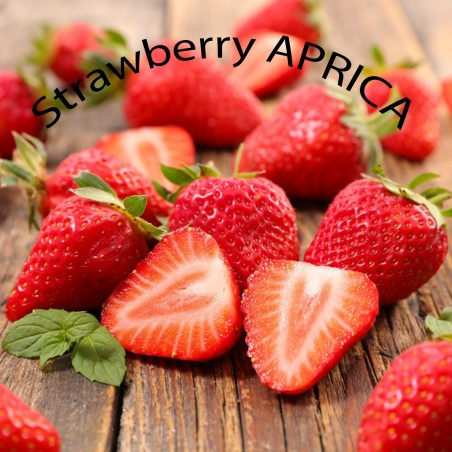 Strawberry seeds 2 in 1 CLERY + APRICA
