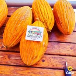ARGITIKO Greek Melon Seeds