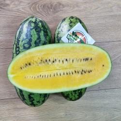 بذور البطيخ أصفر الموز
