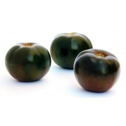 Semi Pomodoro Nero Black Prince
