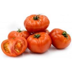 Σπόροι Ντομάτα Beefsteak