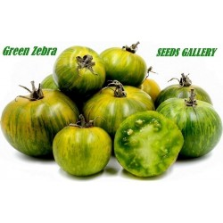 Tomato Green Zebra Seeds