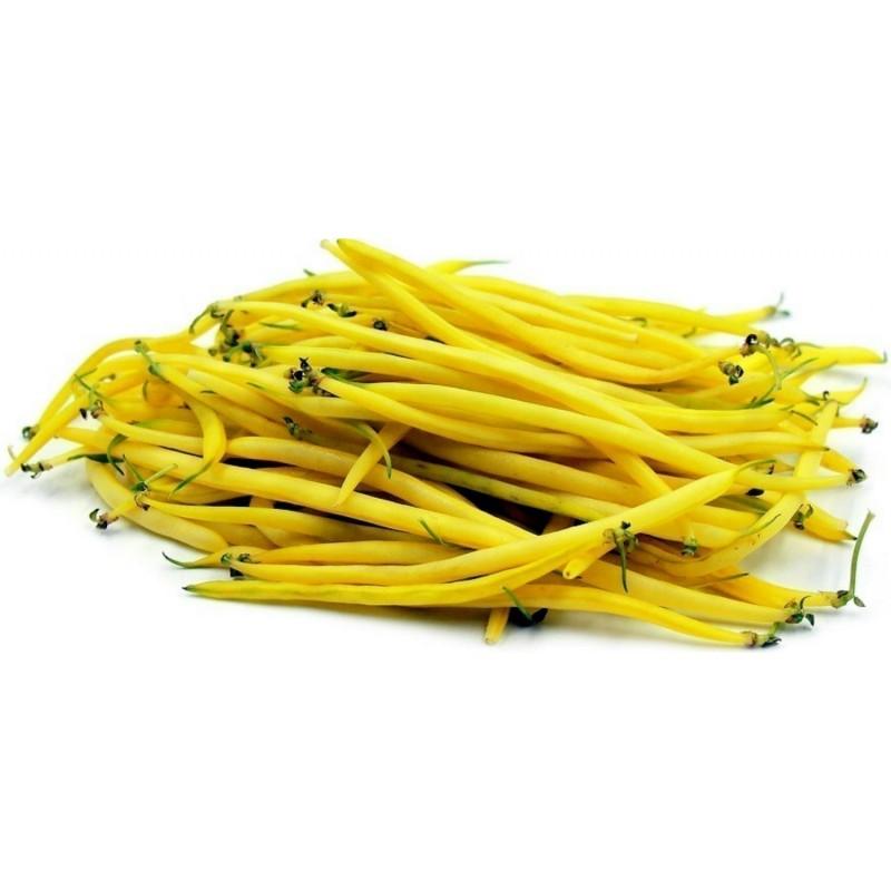 Dwarf Bean Seeds 'Maxidor'