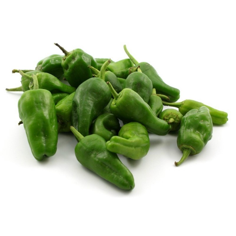 Chilli Pepper Seeds PADRON
