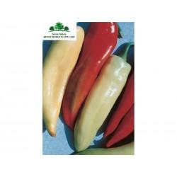 Sweet Pepper Seeds ECSTASY