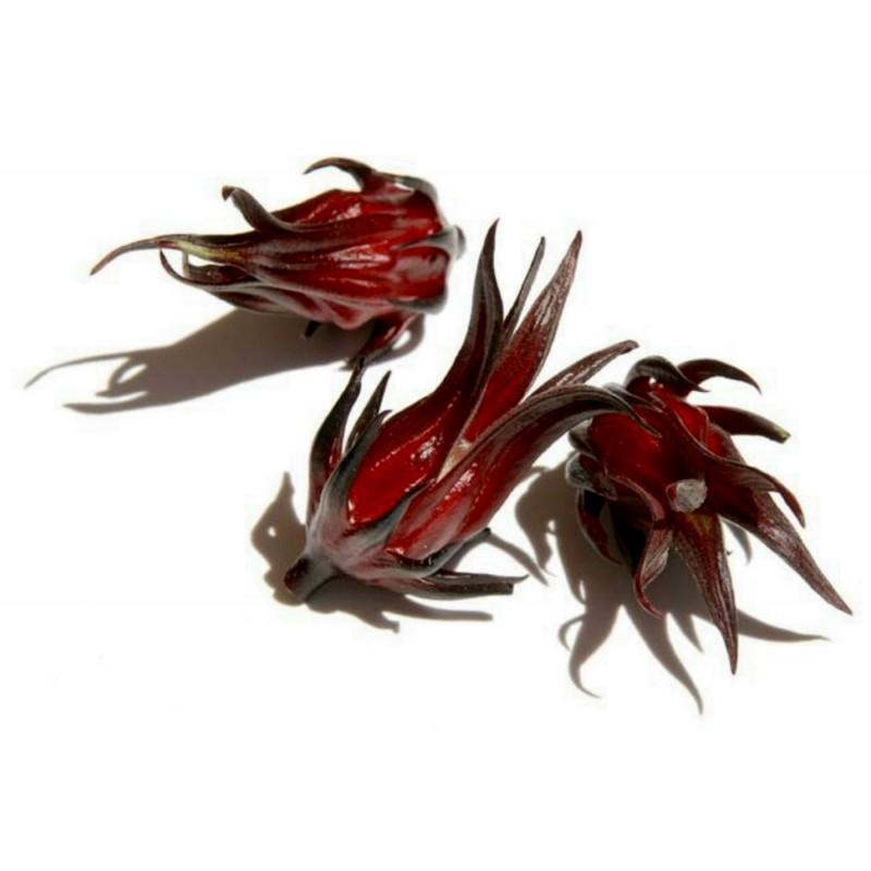 Sementes de Vinagreira, Caruru-Azedo ou Quiabo-Roxo