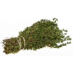 Sementes de Tomilho (Thymus vulgaris)