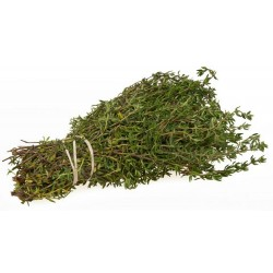 Σπόρος θυμάρι ή θύμιο (Thymus vulgaris)
