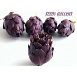 Artischoke Violet de Provence Samen
