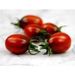 Graines de tomate PRUNE NOIRE - BLACK PLUM