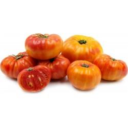 Sementes de Tomate ABACAXI - PINEAPPLE