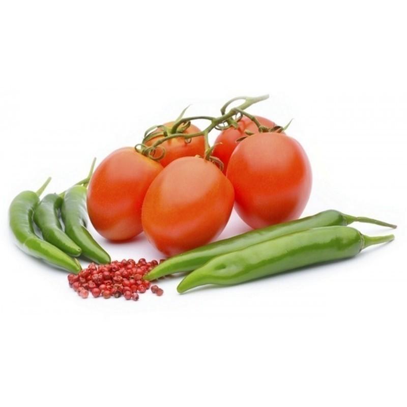 Anzucht Pflegeanleitung für Chili, Tomaten, Gurken Samen