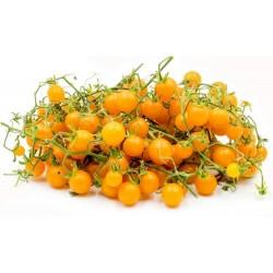 Sementes de Tomate Groselha Amarelo