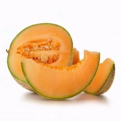 Hales Best Jumbo Cantaloupe Melon Seeds