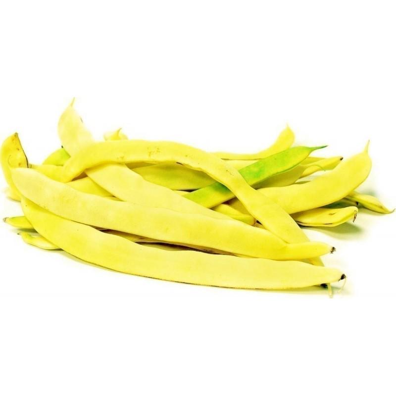 Bush Bean Seeds SUPERNANO GIALLO