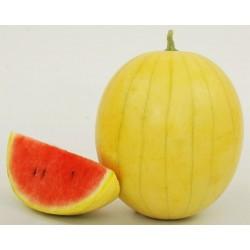 Yellow Skin Watermelon Seeds