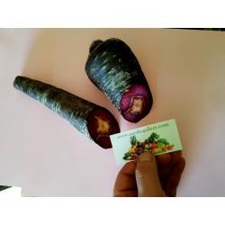 Carrot Seeds Purple Dragon