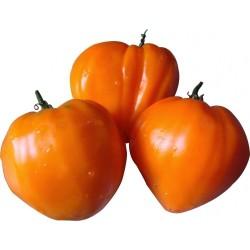 Tomat fröer GERMAN ORANGE STRAWBERRY