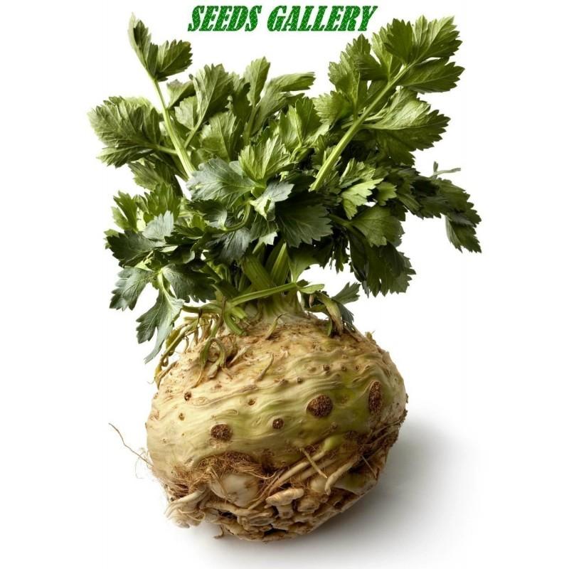 Celer Seme Gigant Prague