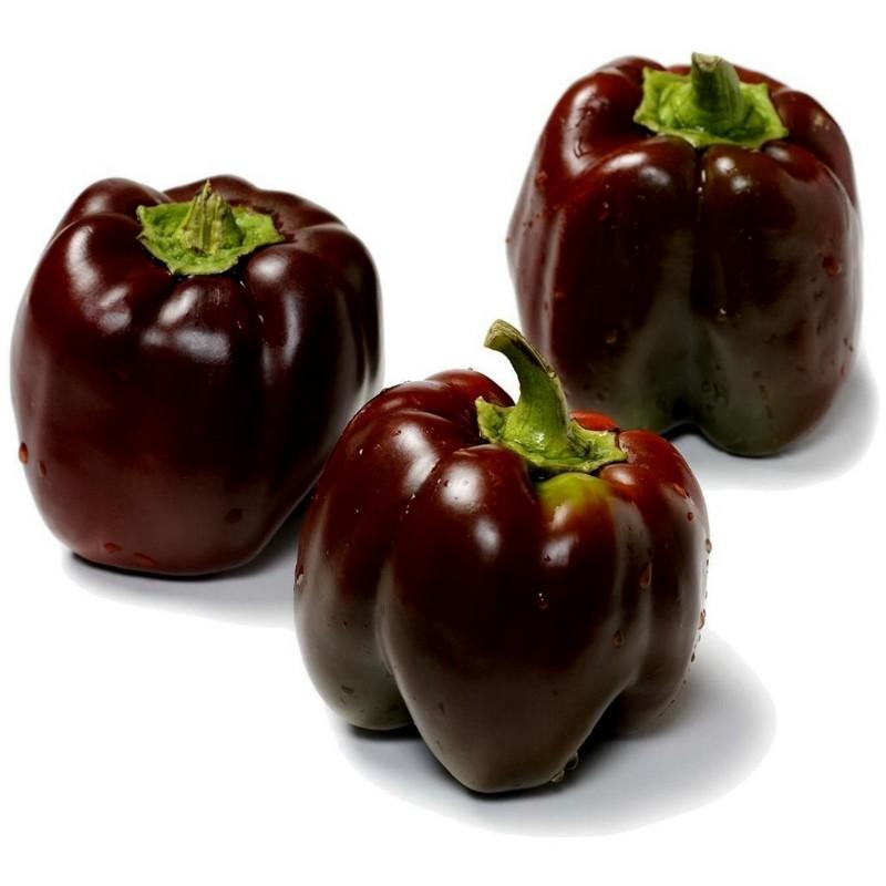 Semi Di Paprika Dolce Chocolate Beauty
