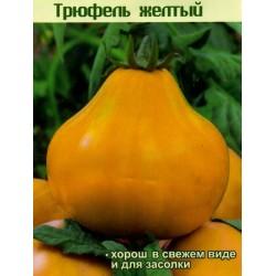 Semi Di Pomodoro Tartufo Giallo - Yellow Truffle