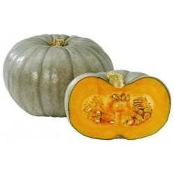 Prince Crown Pumpkin Seeds