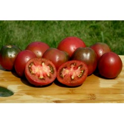Gypsy Tomato Seeds