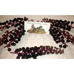 Vinobojka Seme (Phytolacca Americana)