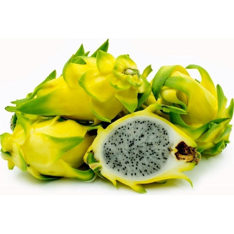 Gelbe Drachenfrucht Samen Pitahaya