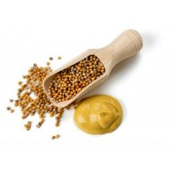 Κίτρινο μπαχαρικά μουστάρδα - μη αλεσμένα 1.25 - 1