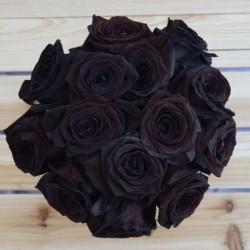 Sementes de Rosa Negra Raro 2.5 - 3