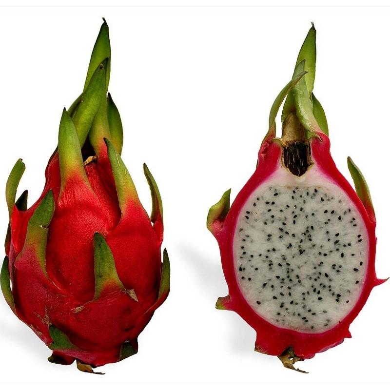 Semi di Pitahaya rossa 2.35 - 6
