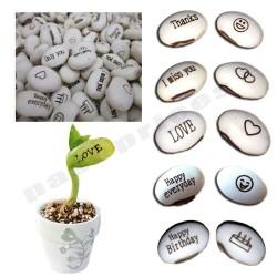 Sementes Mensagem Magic Beans 1.55 - 4