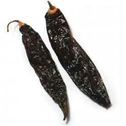 Sementes de Pimentão Peruano Aji Panca (Capsicum baccatum) 1.65 - 6