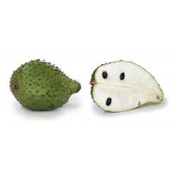 Graviola - Soursop Seeds (Annona muricata) 2.049999 - 4
