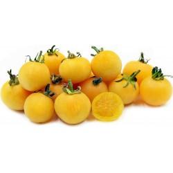 Garden Peach Seme Paradajza 1.95 - 1