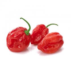 Sementes Da Pimenta Nuclear Red Savina 2.45 - 3