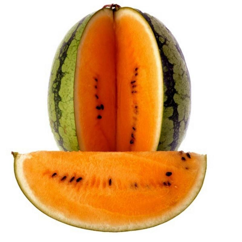 """Orange Watermelon Seeds """"Tendersweet"""" 1.95 - 3"""