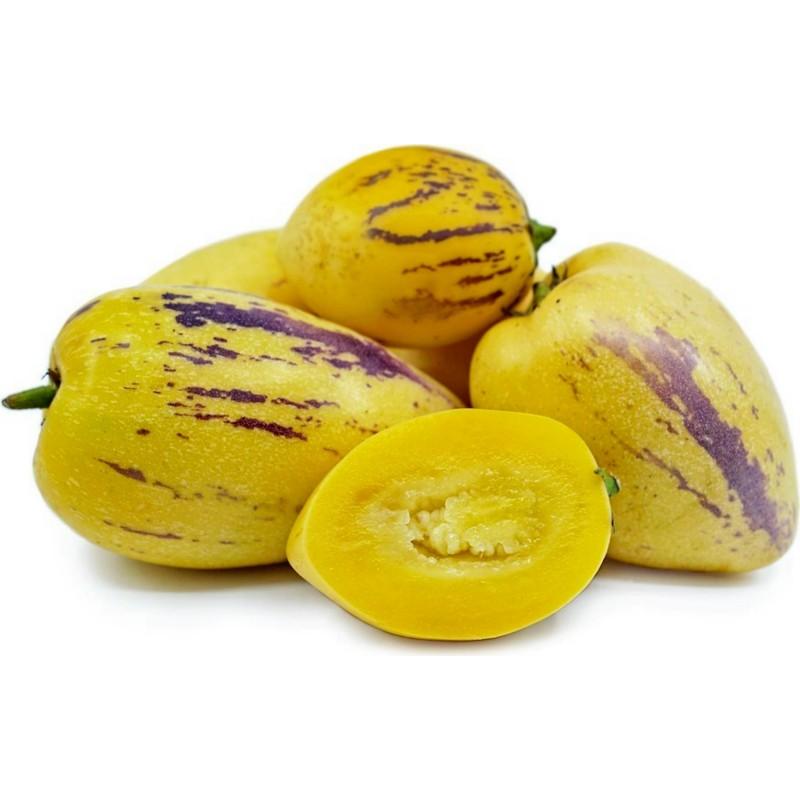 Pepino Seme (Solanum muricatum) 2.55 - 6