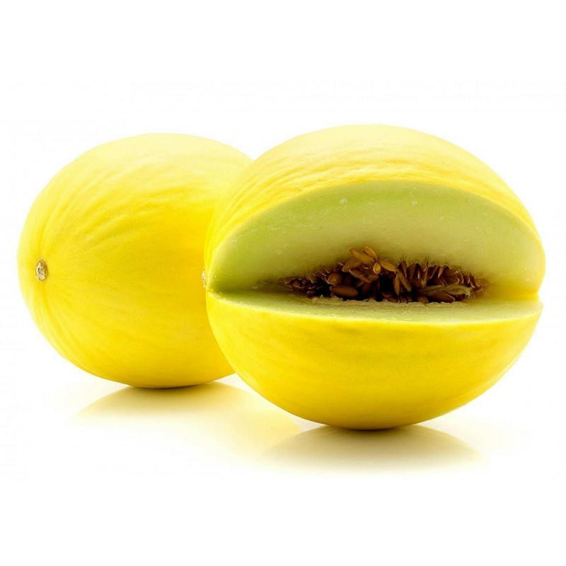 Canary Yellow Melon Seeds 1.95 - 3