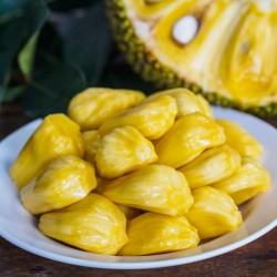 Jackfruit Seme Egzoticno Voce (Artocarpus heterophyllus) 5 - 2
