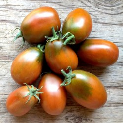 Sementes de tomate BLACK PLUM 2.85 - 3