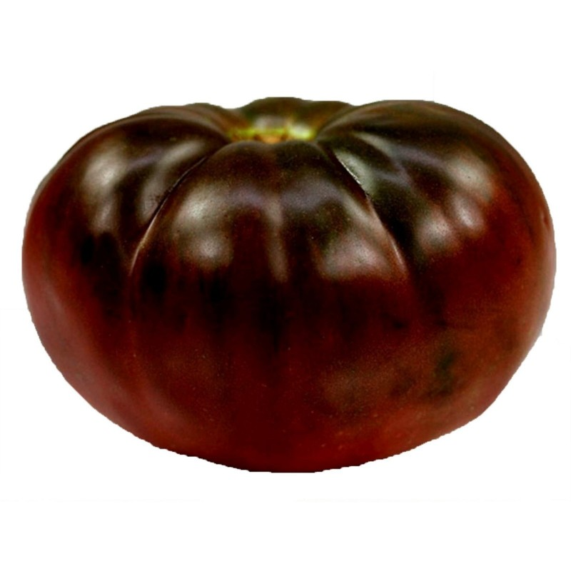 BRANDYWINE BLACK Tomato Seeds 1.85 - 3