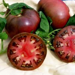 BRANDYWINE BLACK Tomatensamen 1.85 - 2