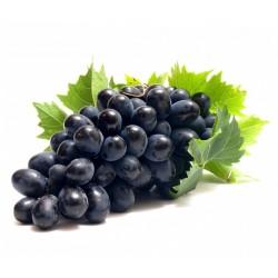 Semi di Uva nera (vitis vinifera) 1.55 - 1